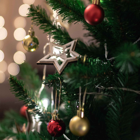 Festival of Trees! Vote on your favorite decorated tree for a chance to win $250 Amazon Gift Card.